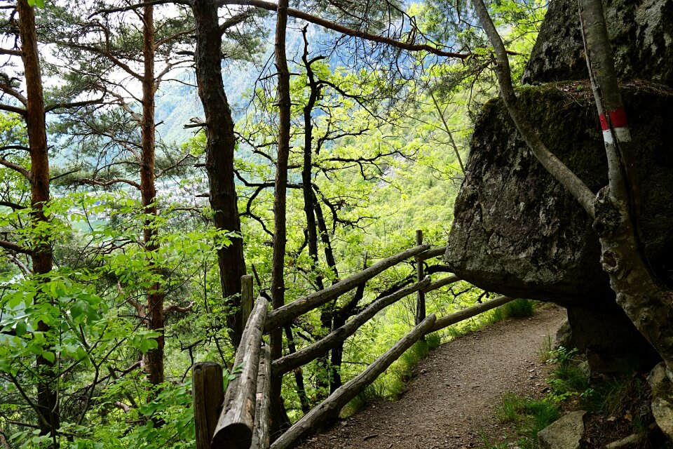 Wanderweg in Suedtirol