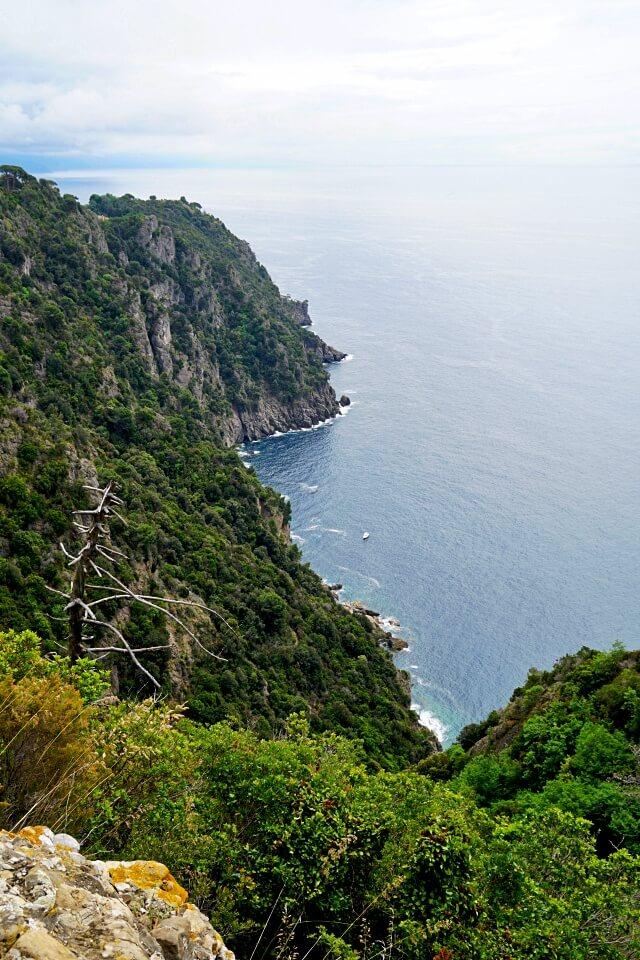 Steilkueste im Naturschutzgebiet Portofino Halbinsel