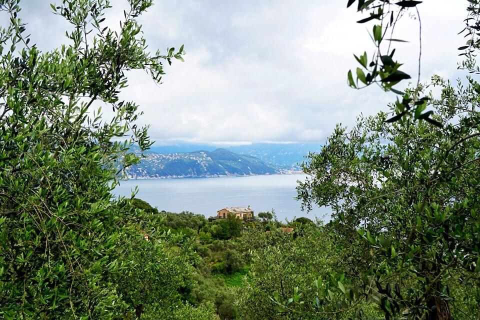 Ausblicke vom Wanderweg bei Portofino