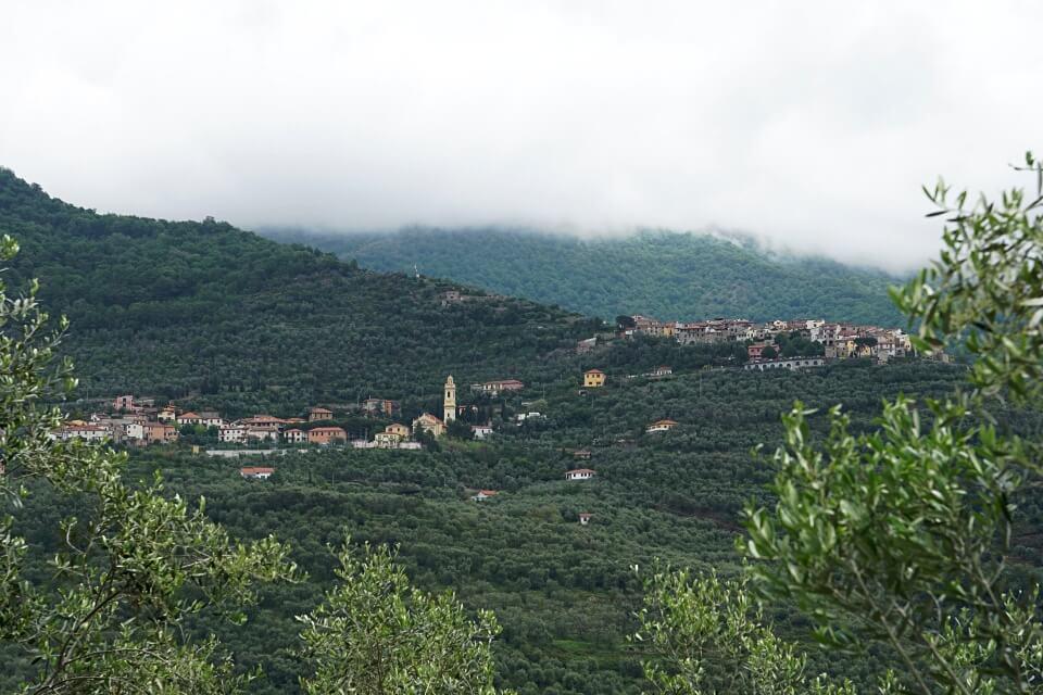 Blick auf Lucinasco und seine Olivenhaine im Hinterland von Ligurien