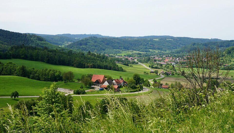Landschaft im Schwaebisch-Fraenkischen Wald