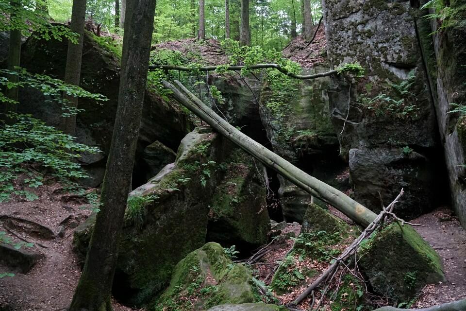 Keuper im Schwaebisch Fraenkischen Wald