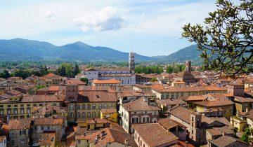 Ausblick auf Lucca in der Toskana vom Torre Guinigi