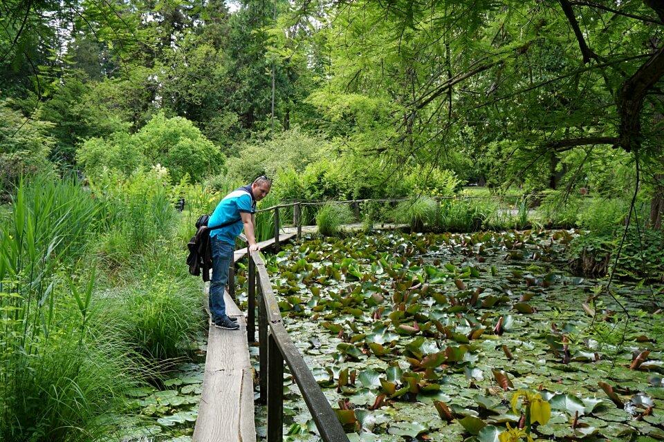 Der Botanische Garten in Lucca
