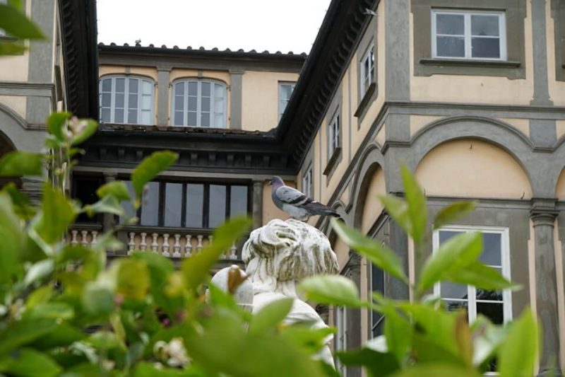 Garten des Palazzo Pfanner in Lucca