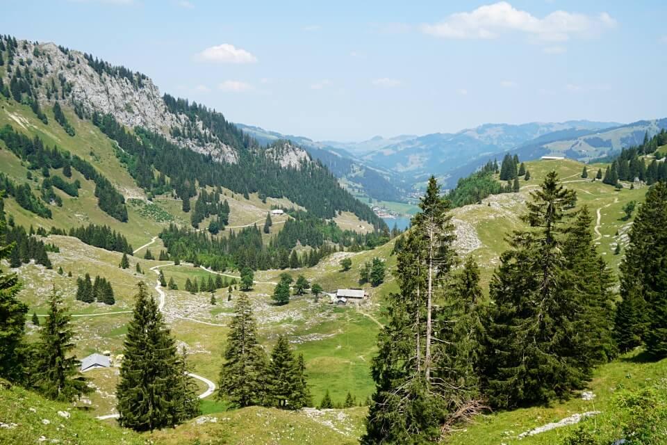 Blick hinunter auf den Schwarzsee im Senseland