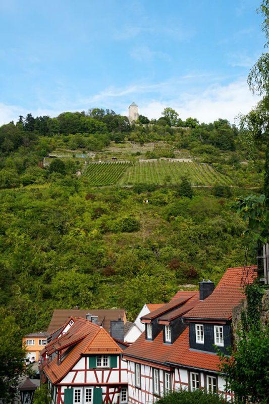 Blick von Heppenheim auf die Starkenburg