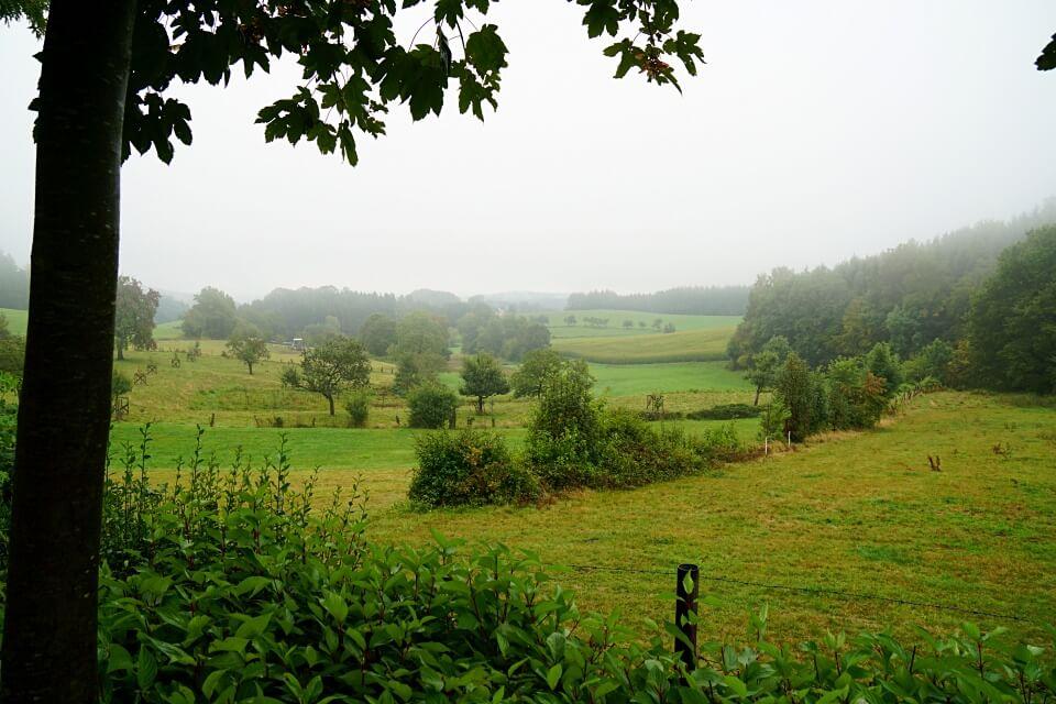 Campingplatz Odenwald