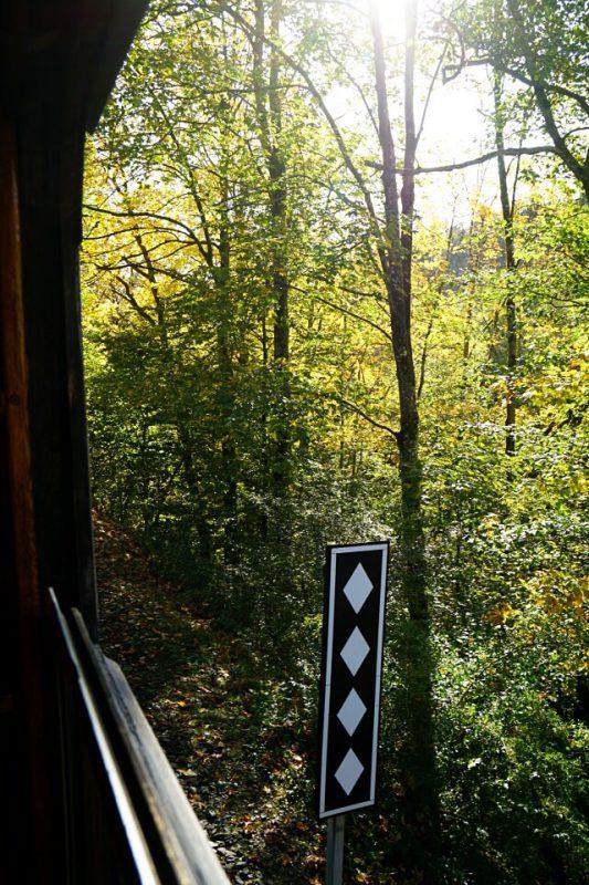 Blick aus der Schwaebischen Waldbahn