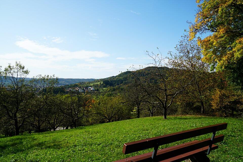Ausblick im Schwaebischen Wald