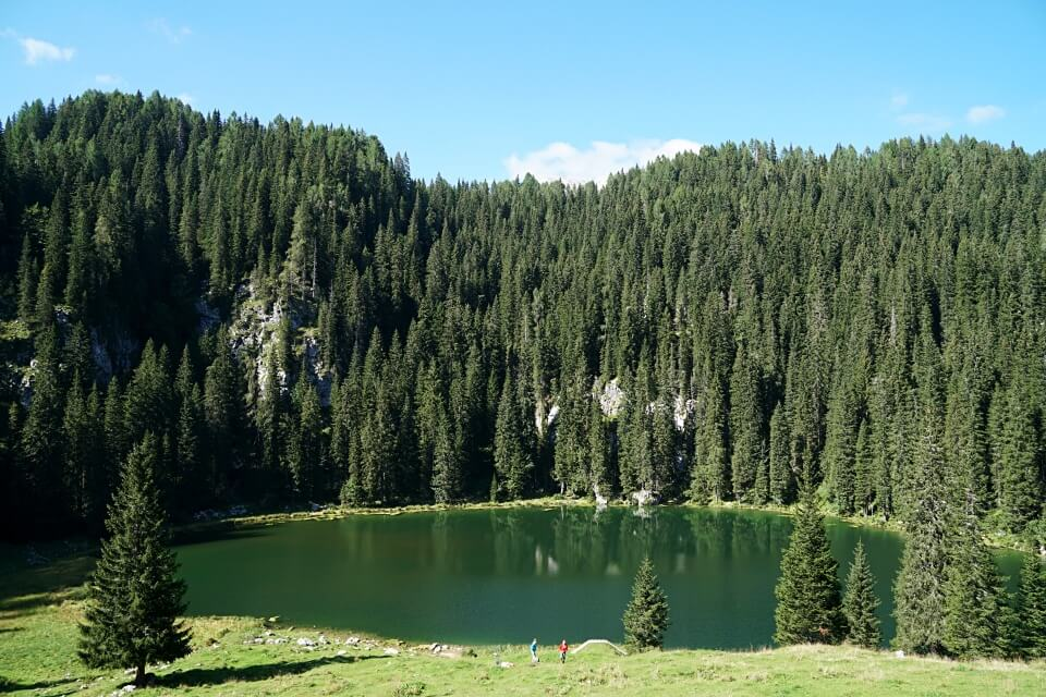 Die Alm Planina Pri Jezeru im Triglav Nationalpark