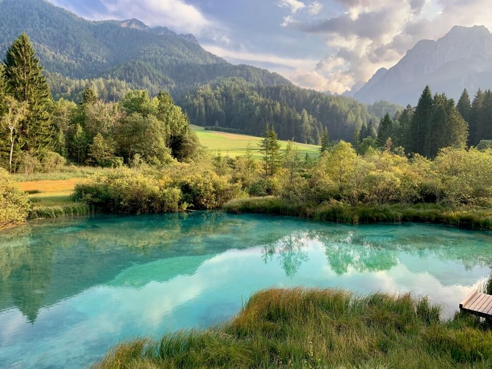 Zelenci Naturreservat Slowenien