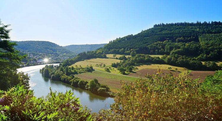 Ausblick auf Neckar und Bergfeste Dilsberg