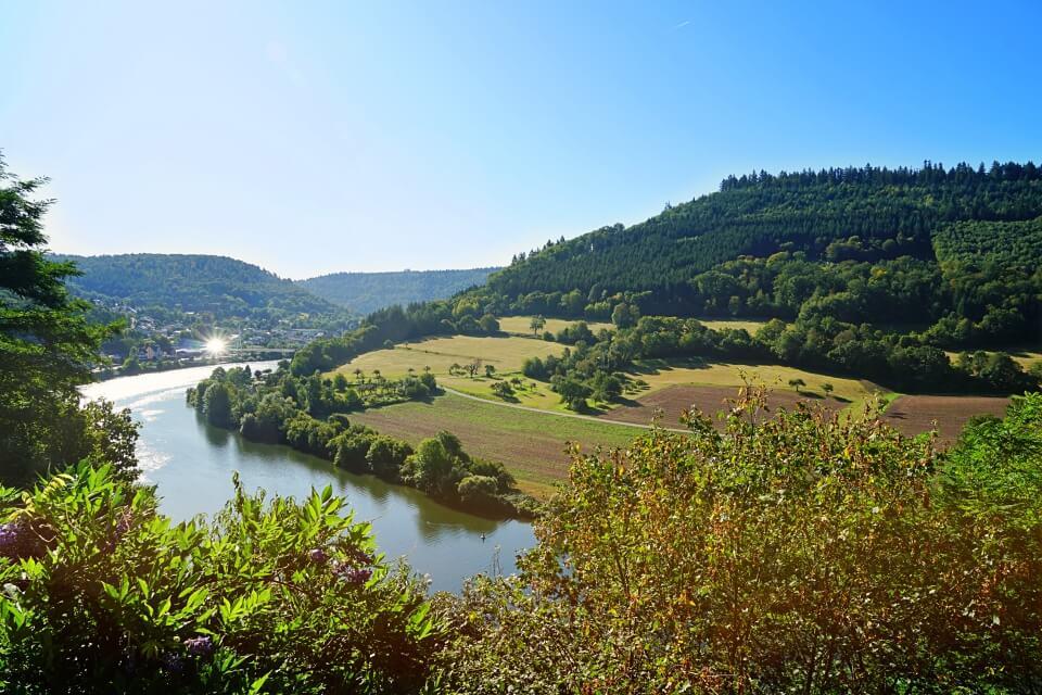 Mit dem Toyota Camper durch den Odenwald: Burgen, Wein & Fachwerkidylle
