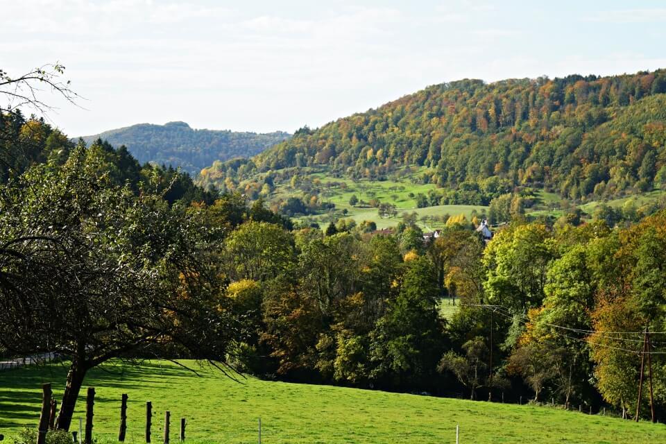 Landschaft beim Wandern im Schwaebischen Wald