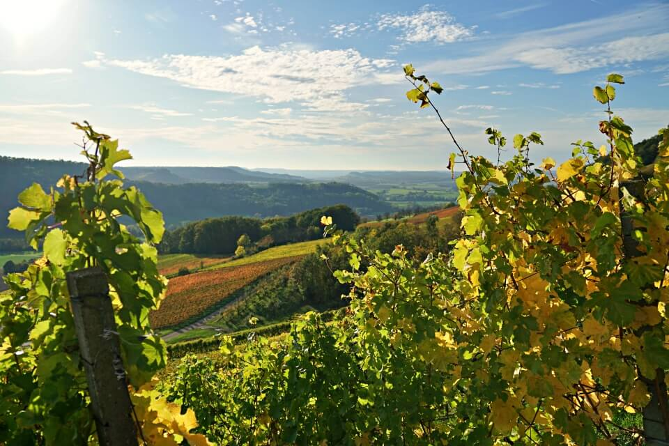 Herbstlandschaft in Hohenlohe im Brettachtal
