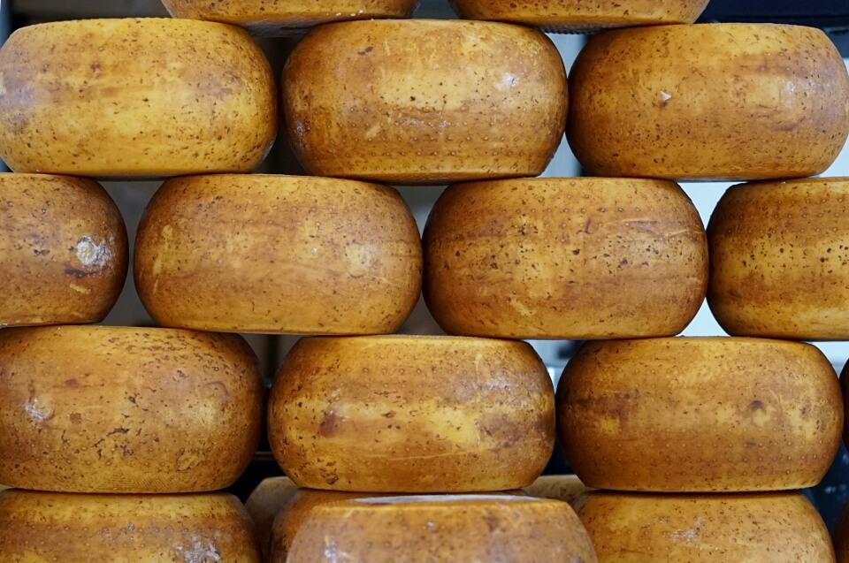 Kaese aus der Emilia Romagna