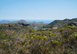 Ausblicke beim Wandern auf den Tafelberg