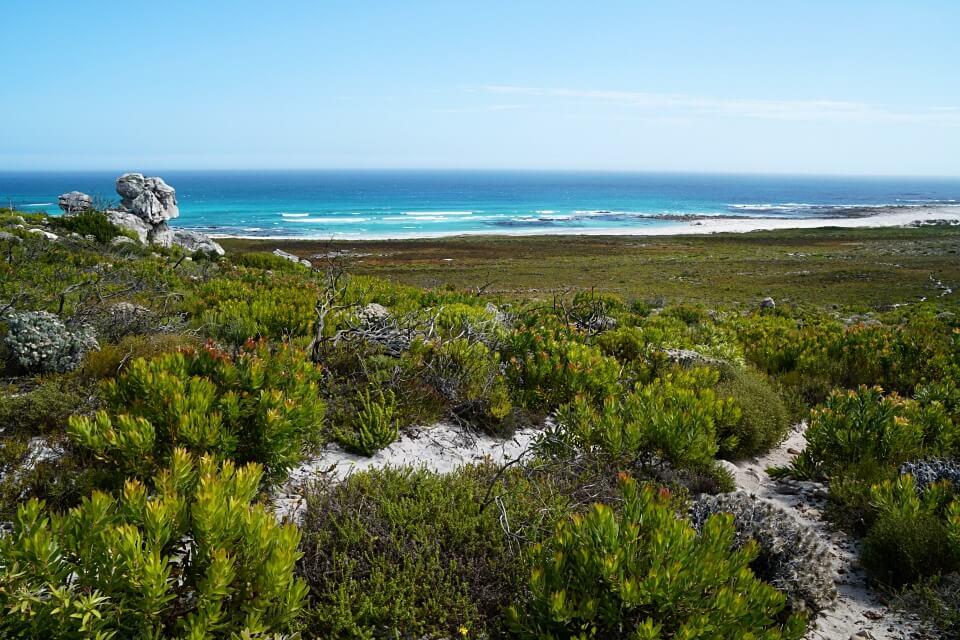 Wandern auf dem Thomas T Tucker Shipwreck Trail auf der Kap Halbinsel