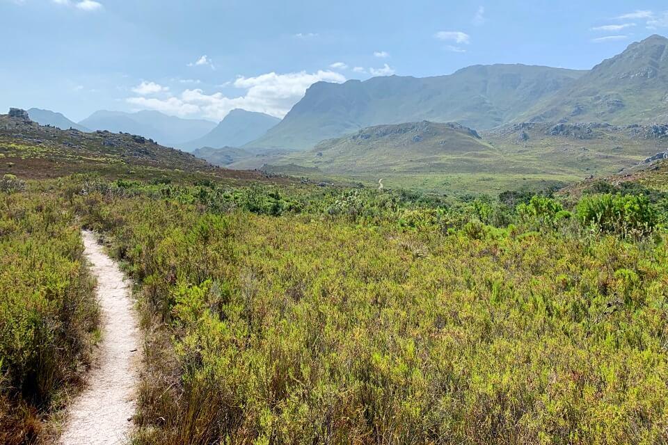 Weite Fynbos Landschaft im Kogelberg Nature Reserve