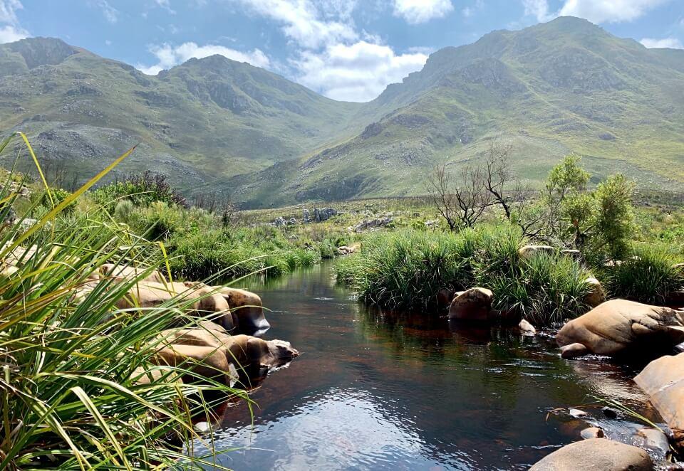 Wasserstelle im Kogelberg Nature Reserve