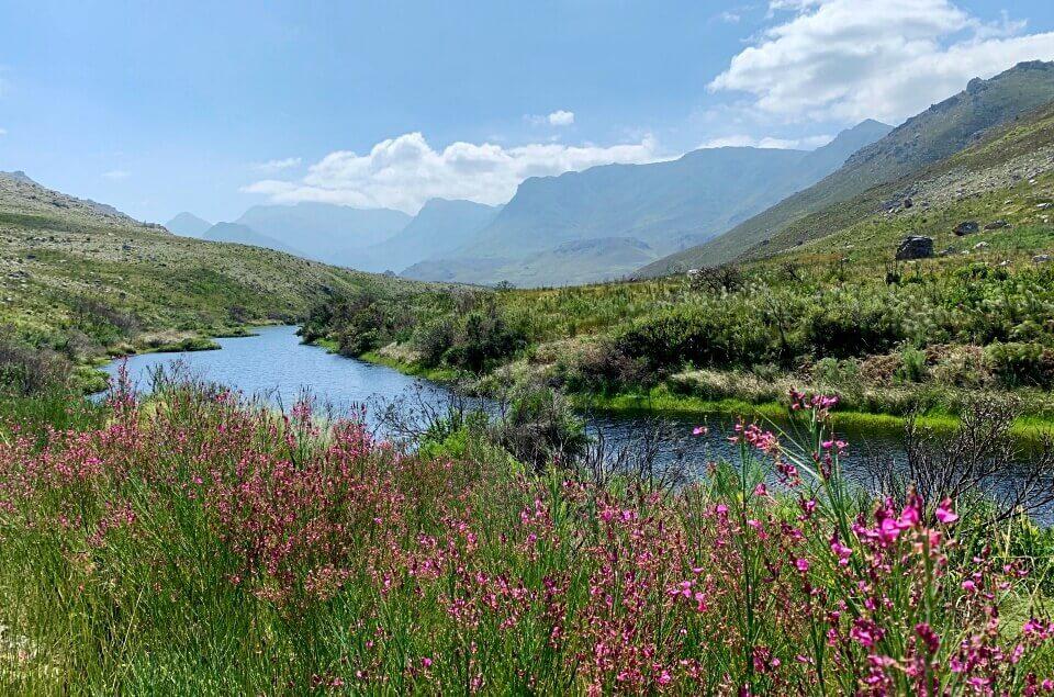 Wandern auf dem Palmiet River Trail durch das Kogelberg Nature Reserve im Western Cape