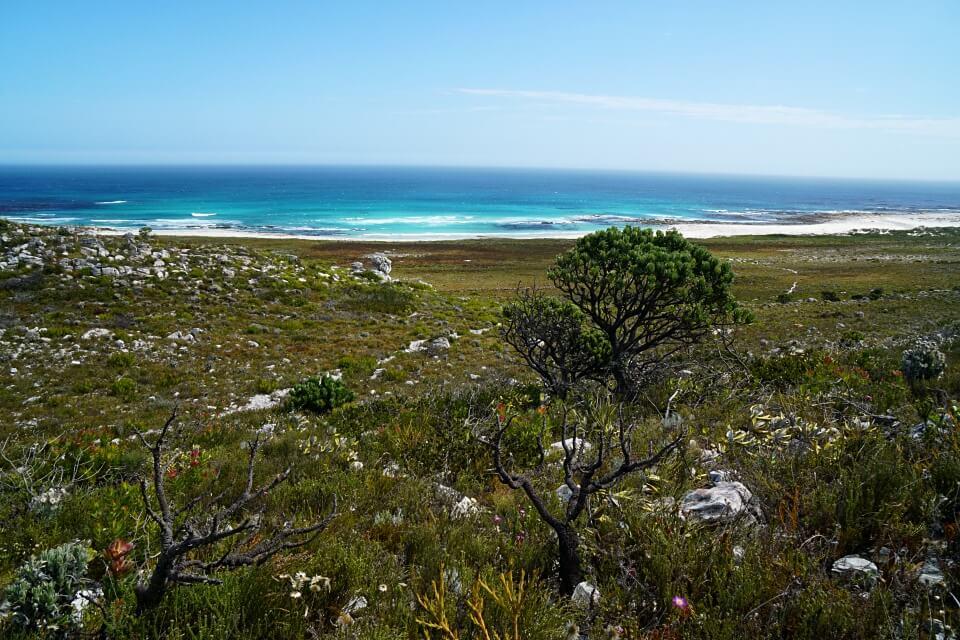 Wandern auf dem Thomas T Tucker Shipwreck Trail am Kap der Guten Hoffnung