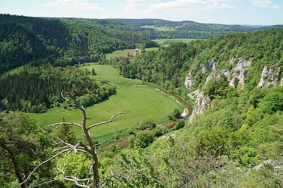 Ausblick ins Donautal auf der DonauWelle Donaufelsentour
