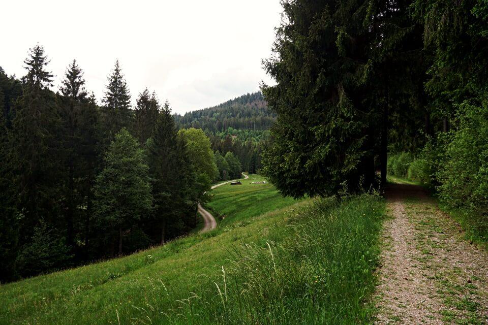 Wege auf der Naturgewalten Tour Wanderung