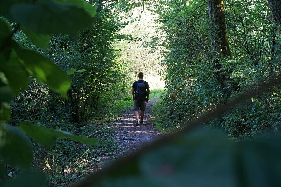 Wanderung durch das Steinbachtal bei Rothenburg ob der Tauber