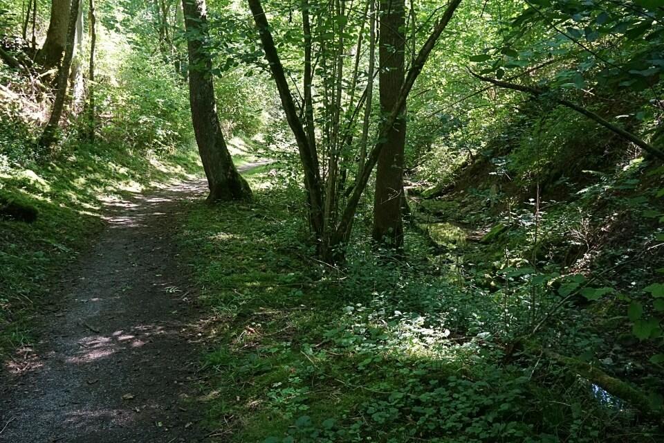 Wandern durch das Blinktal bei Rothenburg ob der Tauber