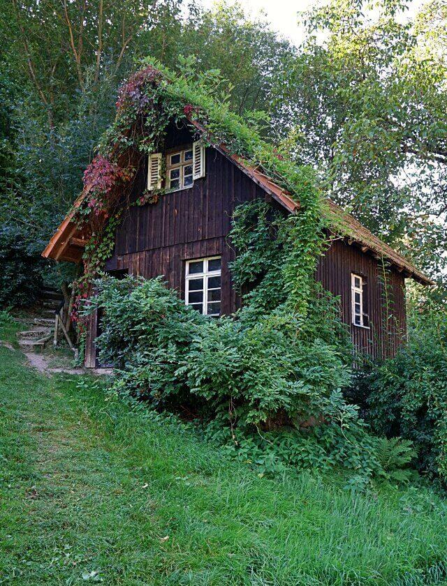 Die Benz Muehle in Ottenhoefen Furschenbach im Schwarzwald