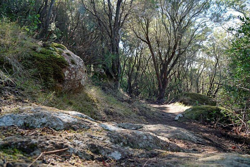 Wanderweg auf Elba zwischen Viticcio und Biodala