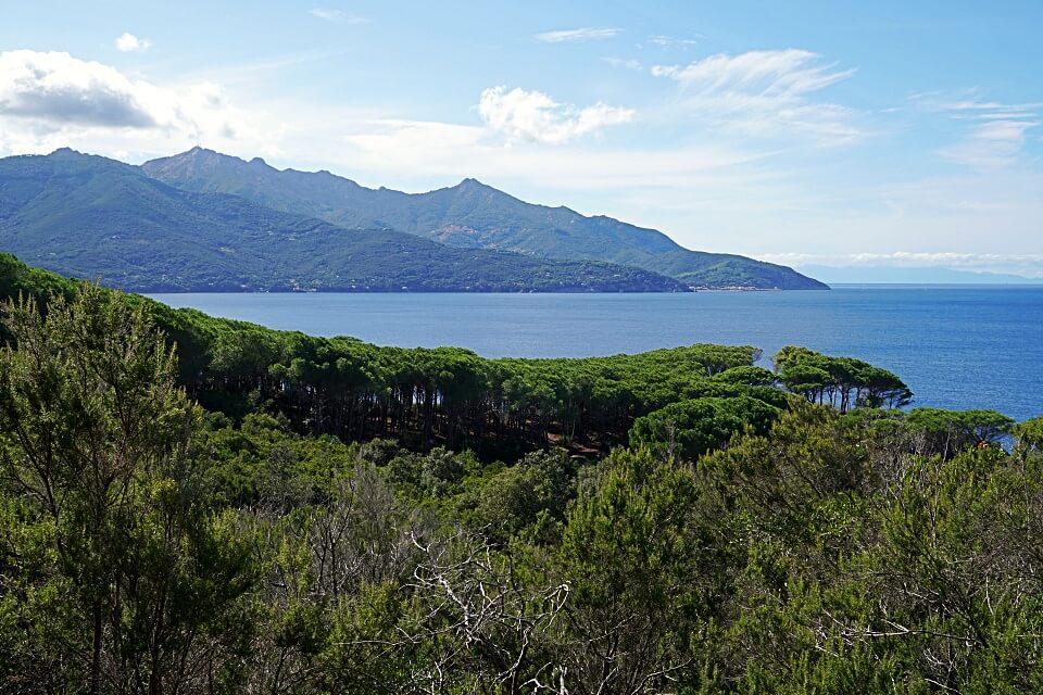 Wandern auf Elba mit Ausblick