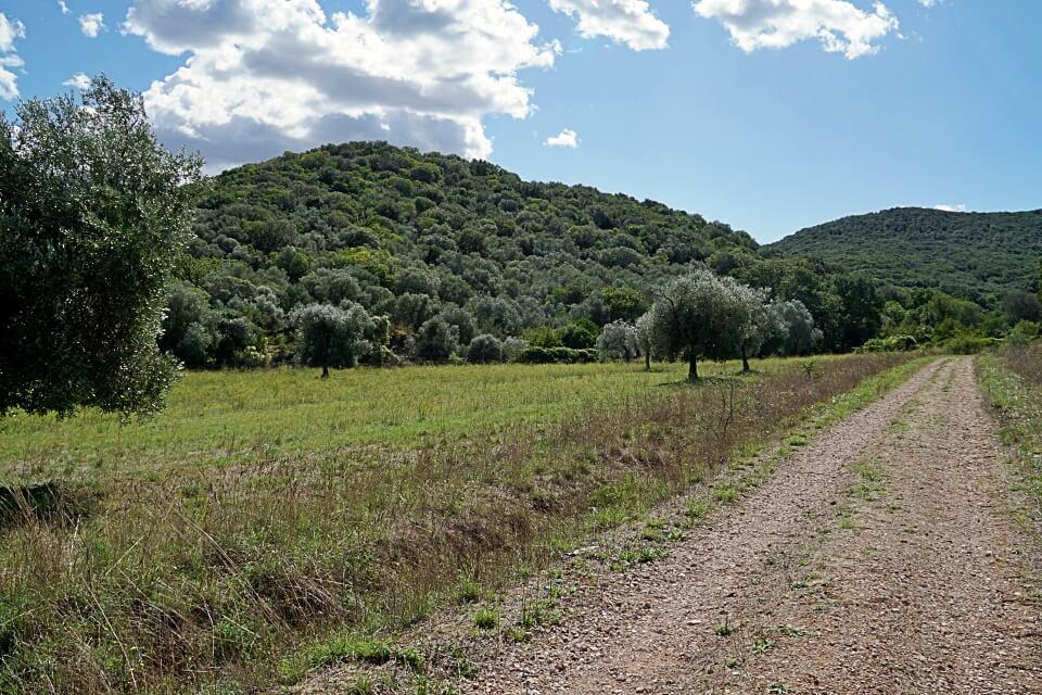 Auf dem Weg in den Parco Regionale della Maremma