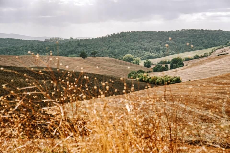 Landschaft im Hinterland der Maremma auf unserem Roadtrip durch die Toskana