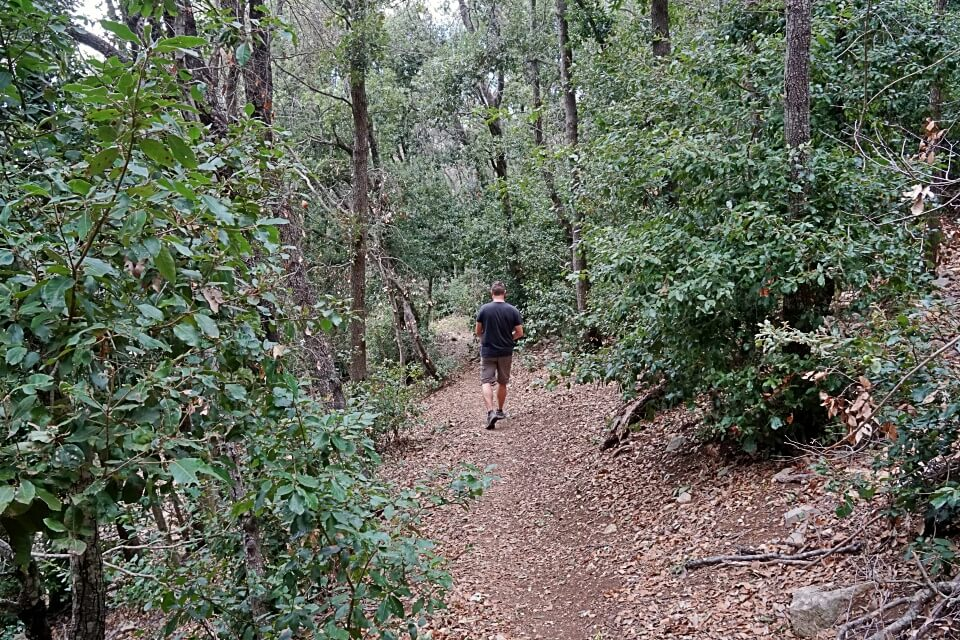 Wanderweg im Naturpark Maremma in Italien