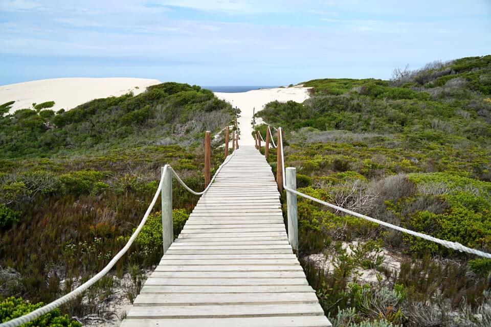 Zu den Sanddunen im De Hoop Nature Reserve