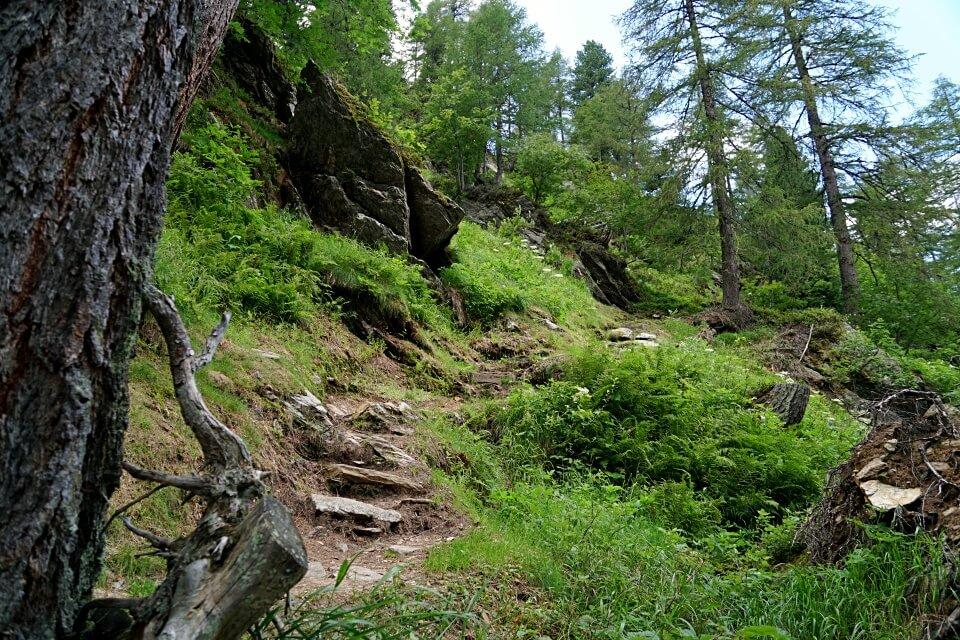 Abstieg auf dem Jaegersteig bei unserer Wanderung zum Seebergsee im Wanser Tal